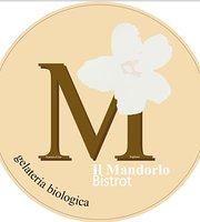 Bistrot Il Mandorlo