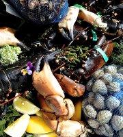 Seafood Restaurant Helder