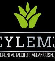 Eylem's