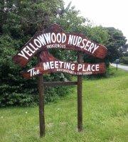 Yellowwood Indigenous Nursery