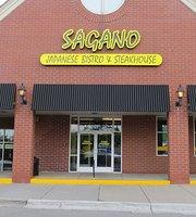 Sagano Japanese Bistro & Steakhouse - Clarkston