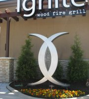 Ignite Wood Fire Grill