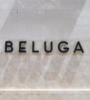 Beluga Malaga