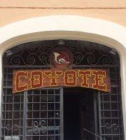 Coyote Risto Pub