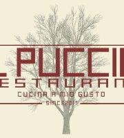 Il Puccio Restaurant