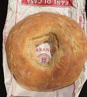 Terranova Bread