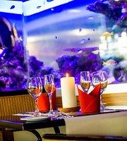 Seven Seas Brasserie & Castaway Bar