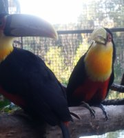 Vale Verde Alambique & Parque Ecológico