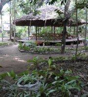 Themi Living Garden