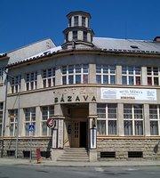 Hotel Sazava
