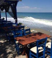 Fish Tavern Delphini