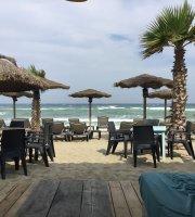 DTC Beach