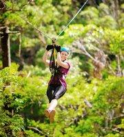 Zipline & Aerial Adventure Parks