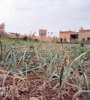 Ecolodge L'ile de Ouarzazate Restaurant