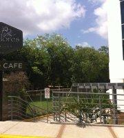Cafe Las Flores Entheos