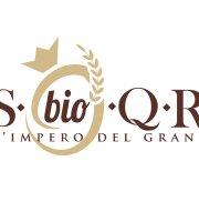 S Bio Q R