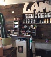 Lame Board Store