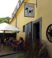 Castle Restaurant U Toryka