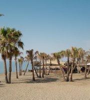 Trocadero Petit Playa