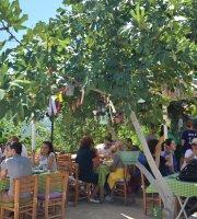 Yesil Ev Otel & Cafe
