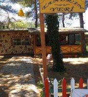 Taner'in Yeri