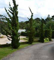 Bistro Villa Casato