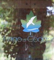 Roico sul Lago di Codana
