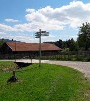 Erlebnishof Alte Mühle Biergarten