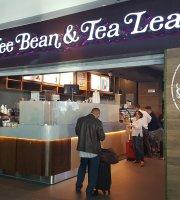 The Coffee Bean and Leaf Panama