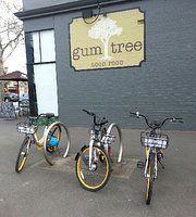 Gum Tree Good Food
