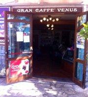 Gran Caffe Venus di Giliberti Maria