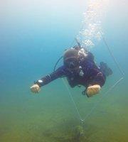 Lặn bằng bình khí & lặn bằng ống thở