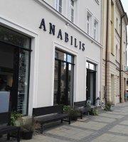 Anabilis