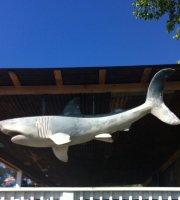 Sharky's Bayside Grill