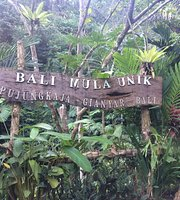Bali Jungle Huts Updated 2019 Prices Campground Reviews