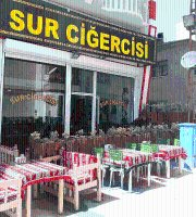 Sur Cigercisi