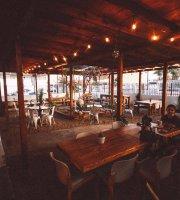 Suculenta Deli Cafe