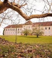 Schloss Kohfidisch