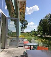 Restaurant Cafe Du Musee Du