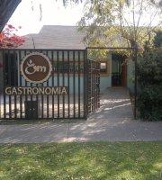 Om Gastronomia