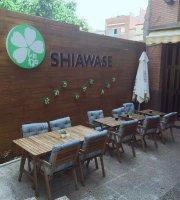 Shiawase  Cornella de L Obregat