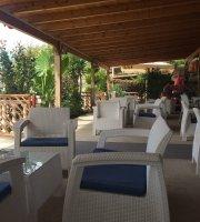 Bar Restorant OLSI