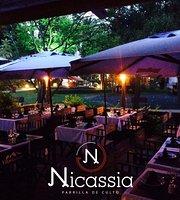 Nicassia Campo