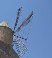 Santa Margalida Mallorca