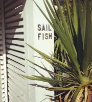 Sail Fish