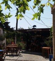 Theano Taverna
