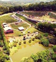 Quinta do Olivardo