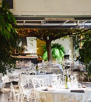 Summer Ark Café