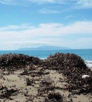 Παραλία Καστροσυκιάς