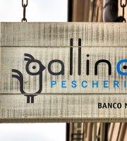 Pescheria Ristorante Gallina